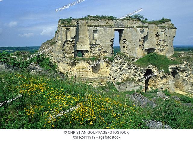 ruins of the ancient dungeon, destroyed in 1917, of the medieval fortified castle at Coucy-le-Chateau-Auffrique, Aisne department, Picardy region
