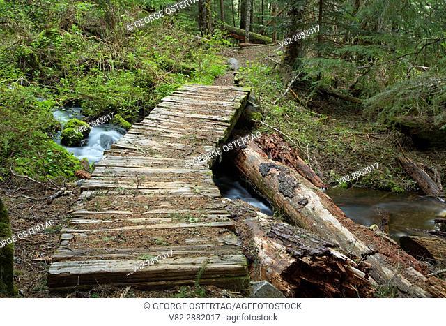 Hunts Creek Trail bridge, Mt Jefferson Wilderness, Willamette National Forest, Oregon