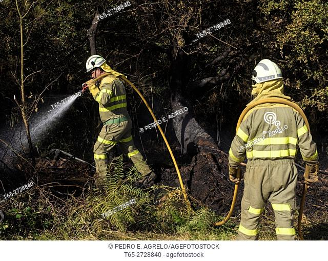 Forest fire in Galicia. Some brigade Rural of the Xunta de Galicia, cool forest area burned this summer in the province of Lugo