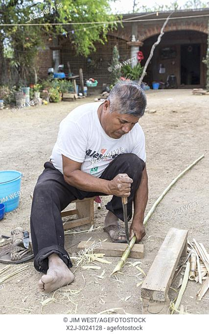 San Juan Guelavía, Oaxaca, Mexico - Man prepares carrizo, a bamboo-like river reed, from which he will weave baskets