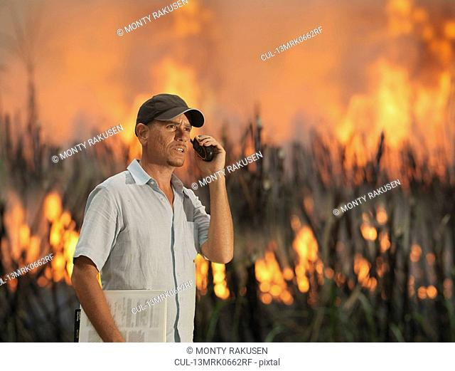 Worker With Burning Sugar Cane