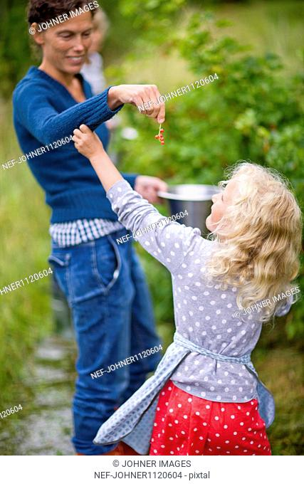 Mother giving red currant to girl