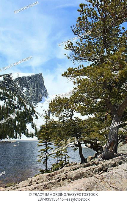 A view across Emerald Lake including snow capped mountain peaks and a pine forest covery the snowy mountainside on the Bear Lake Trail in Rocky Mountain...