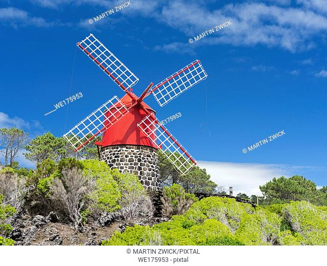 Traditional windmill near Sao Joao. Pico Island, an island in the Azores (Ilhas dos Acores) in the Atlantic ocean. The Azores are an autonomous region of...