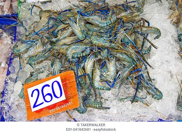 Many live freshwater prawns In the ice Price tag (baht)
