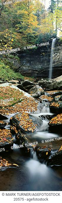 Lower Falls of Hills Creek from downstream with fallen leaves, autumn