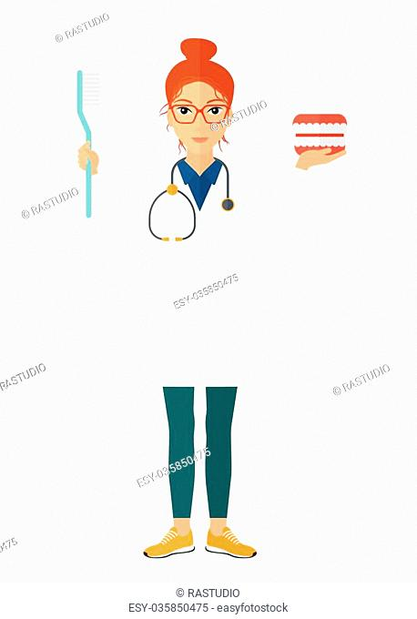 Dentist with a dental jaw model and a toothbrush vector flat design illustration isolated on white background. Vertical layout
