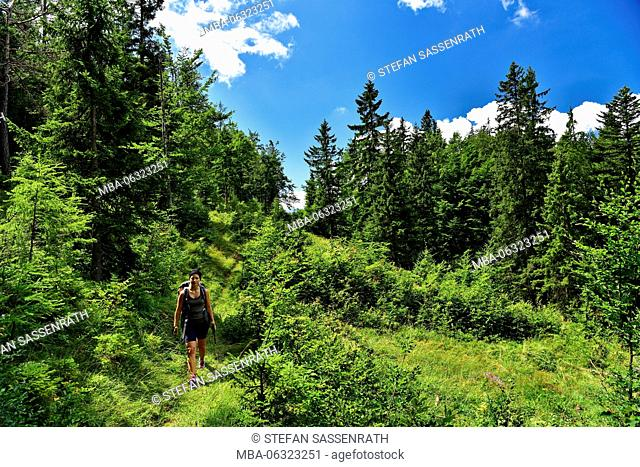 Young woman hiking through a bright forest