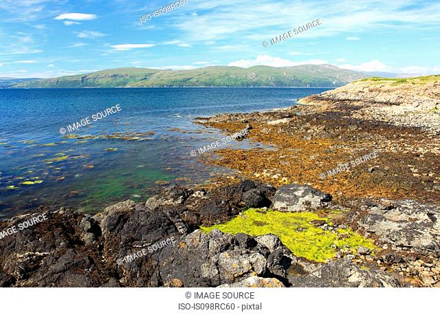 Coast of mull
