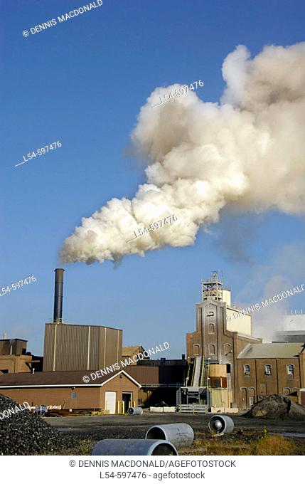 Air pollution pours from smoke stacks from a sugar beet processing plant as a result of burning coal
