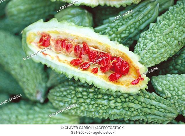 Bitter melon (Momordica charantia) therapeutic remedy in Phillippines