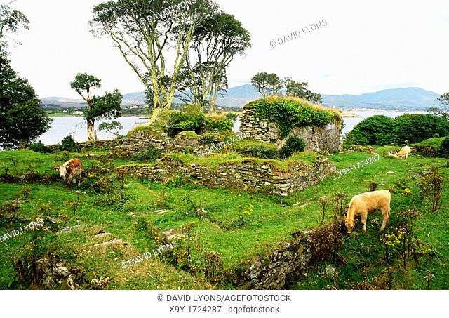 Dunboy Castle ruins on the south of Beara Peninsula, County Cork, Ireland  Stronghold of Gaelic clan leader O'Sullivan Bere