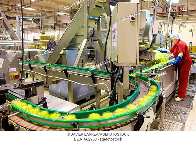 Production line of canned vegetables and beans in glass bottle, Corn, Maize, Canning Industry, Agri-food, Logistics Center, Navarra, Spain