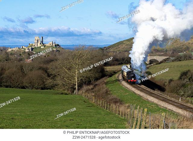 A class M7 tank locomotive number 30053 heads the 12. 15pm steam train from Corfe Castle to Swanage on the Swanage Railway on the 27th December 2014