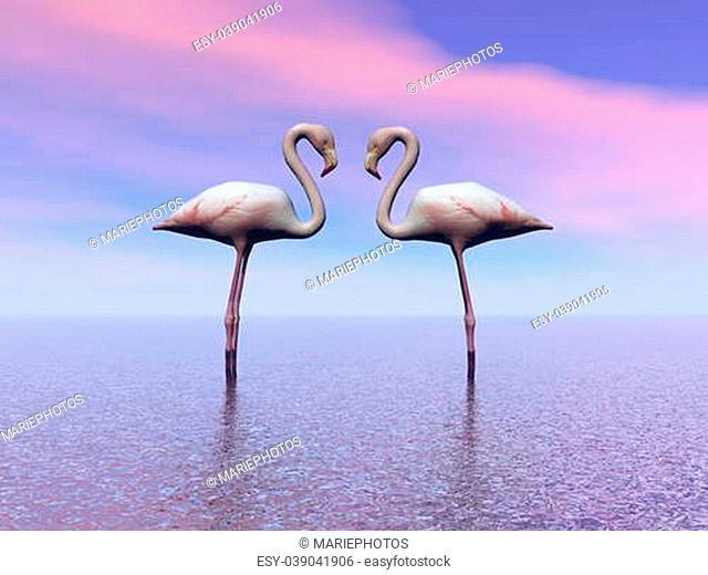 flamingo and sea