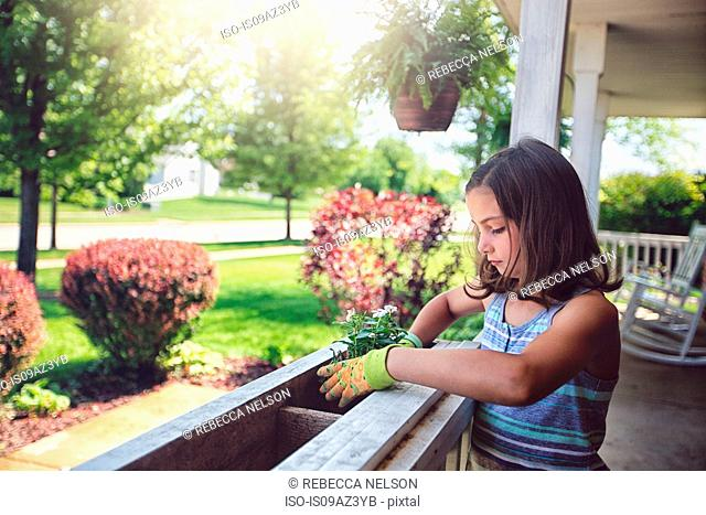 Girl planting flowers in planter box