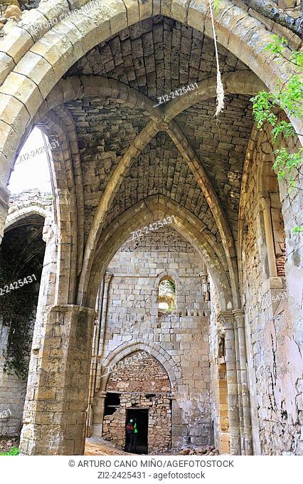Ruins of the Monastery of Bonaval, Cistercian, XIIth century. Retiendas, Guadalajara, Spain