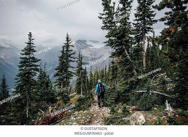 Canada, British Columbia, Yoho National Park, man hiking at Mount Burgess