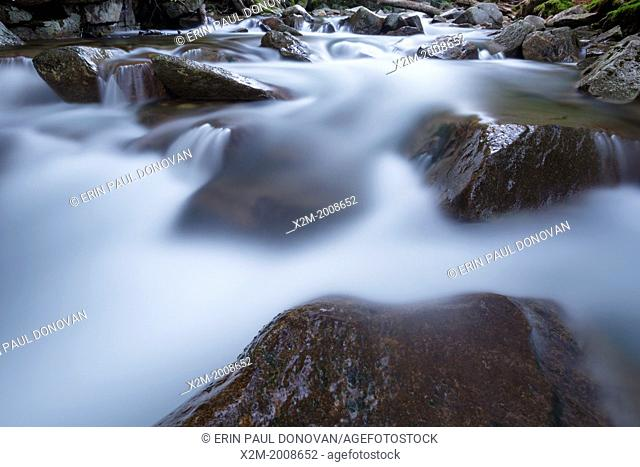 """Franconia Notch State Park - The Pemigewasset River in the area of """"""""The Basin"""""""" viewing area in Lincoln, New Hampshire USA during the spring months"""