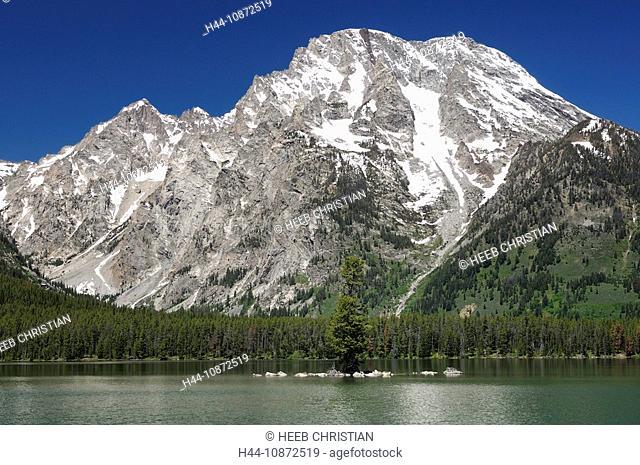 Leigh Lake and Mount Moran, Teton Mountain Range, Grand Teton National Park, Wyoming, USA
