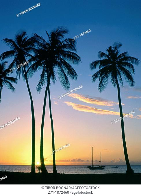 Caribbean, Nevis, Pinney's Beach