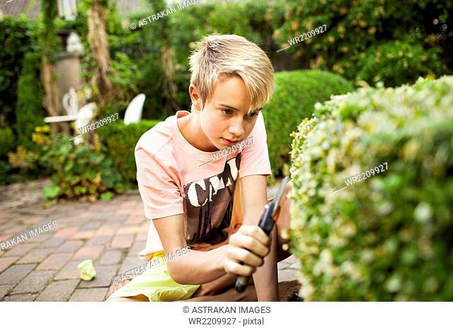 Teenage boy cutting plants in backyard