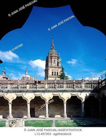 Courtyards of Minor Schools (16th century), Salamanca. Castilla-León, Spain