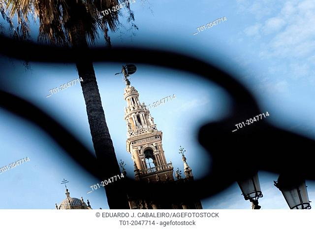La Giralda through a chain link. Sevilla
