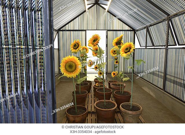 """"""""""""""""""""""" Trois pieces sur cour: La serre du Bonheur"""""""", installation d'Agnes Varda, Galeries de la cour des jardiniers, Domaine de Chaumont-sur-Loire"""