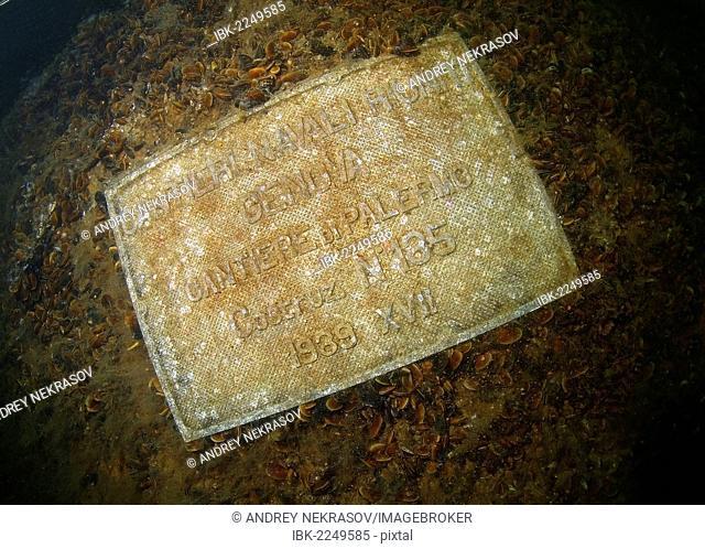 Plate, from the shipwreck Sulina, Odessa, Black Sea, Ukraine, Eastern Europe