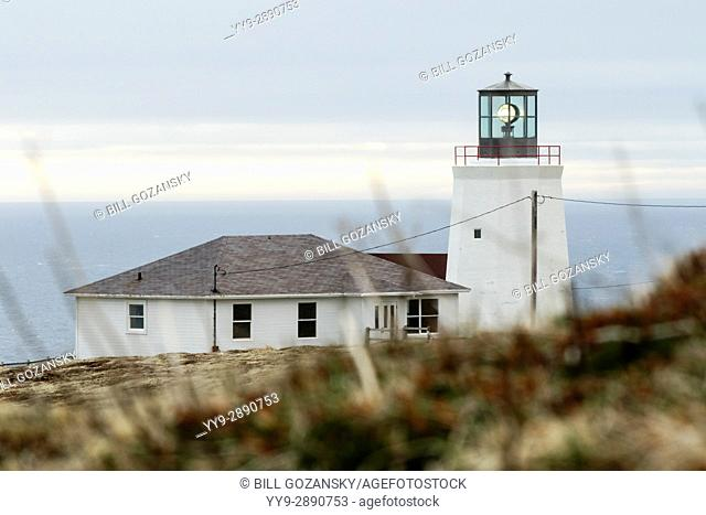 Coast Guard Lighthouse near Cape St. Mary's Ecological Reserve, Cape St. Mary's, Avalon Peninsula, Newfoundland, Canada