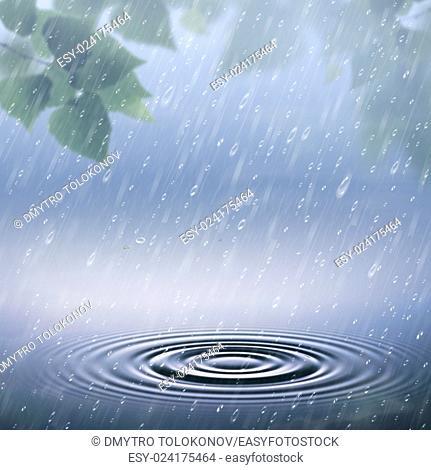 Eco rain, abstract seasonal backgrounds with rain droplets and green foliage