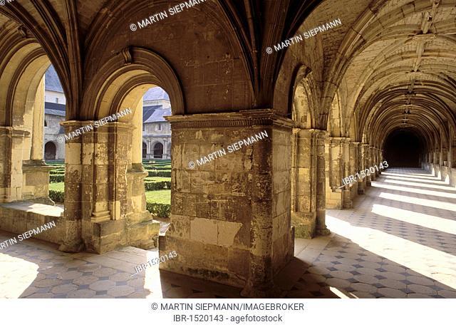 Cloister Ste-Marie, Abbaye Royale de Fontevraud abbey, Anjou, Maine-et-Loire, Pays de la Loire, France, Europe