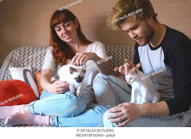 Young couple with kittens on the couch at home