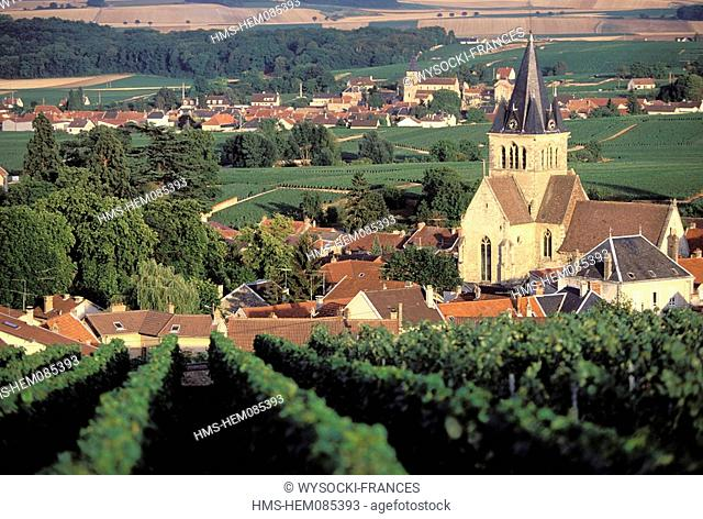 France, Marne, vineyards between Reims and Epernay