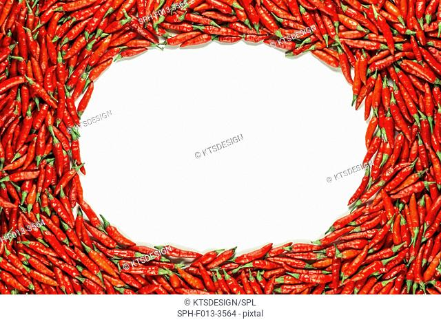 Red chilli peppers and blank space