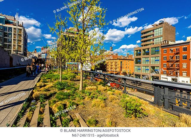 Elevated park The High Line is a 1. 45-mile-long New York City linear park built in Manhattan on an elevated section of a disused New York Central Railroad spur...