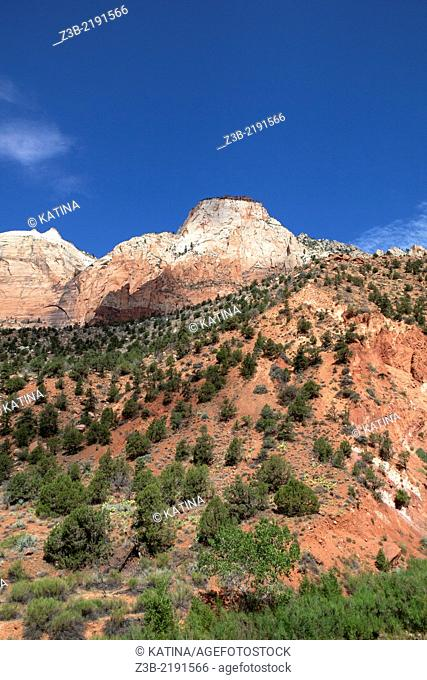ZIon National Park in summer, Utah, USA