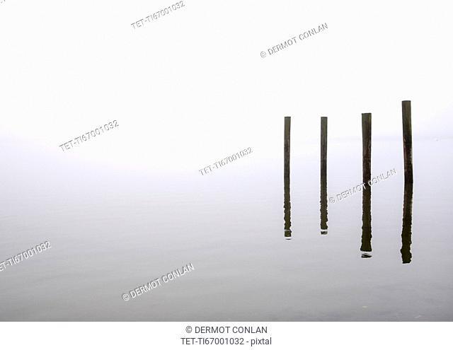 USA, Massachusetts, Cape Cod, Eastham, Wooden posts in fog