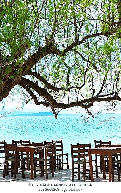 Empty tables and chairs of a taverna at the Pagasitic Gulf on Pelion Peninsula, Thessaly, Greece