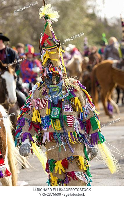 Traditional Cajun Mardi Gras costumed reveler dances during the Courir de Mardi Gras chicken run on Fat Tuesday February 17, 2015 in Eunice, Louisiana