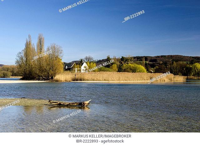 View towards Werd island across the Rhine river at low water, near Stein am Rhein, Eschenz, Canton of Thurgau, Switzerland, Europe