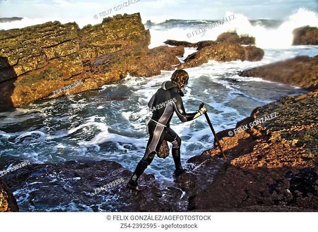 Barnacle fisherman in a rock Asturias, Spain