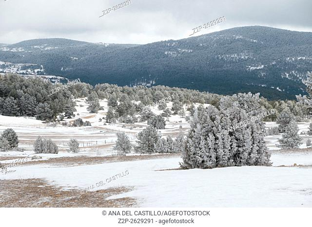 wonderful winter in snowfall day. Gudar mountains in Teruel Aragon Spain