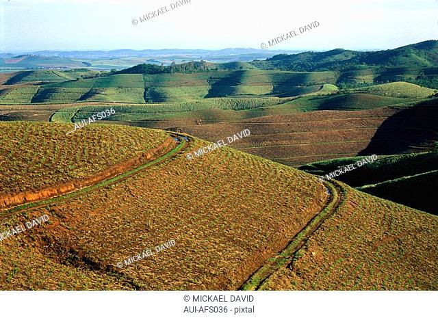 South Africa - Zululand