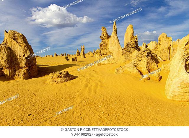 The Pinnacles, Nambung National Park, Cervantes, West Australia, Australia