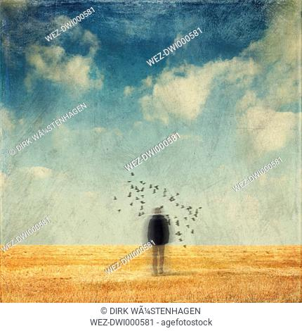 Germany, Wuppertal, back view of man standing on stubble field surrounded by birds