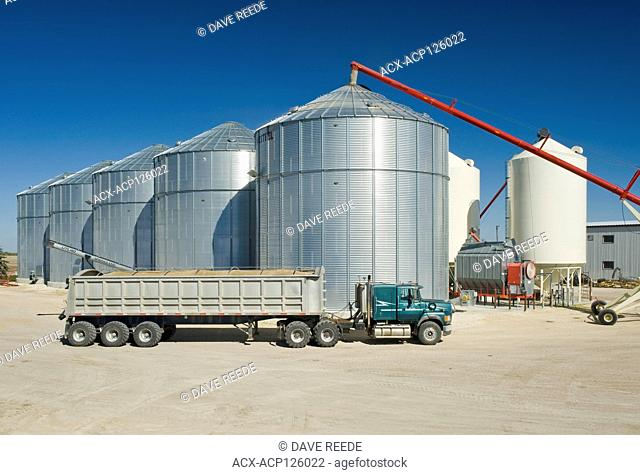 a farm truck next to grain storage bins in a farmyard, near Lorette, Manitoba