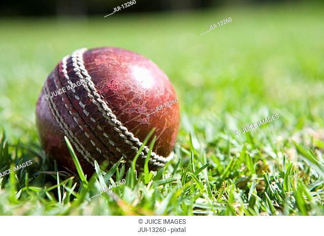 Cricket ball on grass, close-up