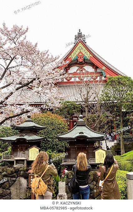 Three young visitors at the Senso-ji Temple, Asakusa, Tokyo, Kanto region, Japan